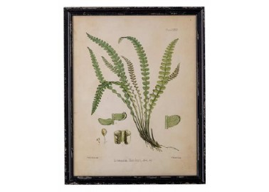 Cadre façon herbier Abeni n°1 - Bloomingville