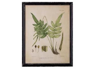 Cadre façon herbier Abeni n°2 - Bloomingville